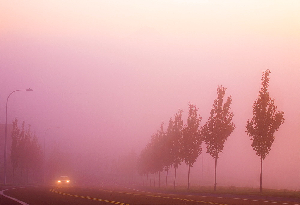 Car On Rural Highway In Fog, Happy Valley, Oregon, Usa