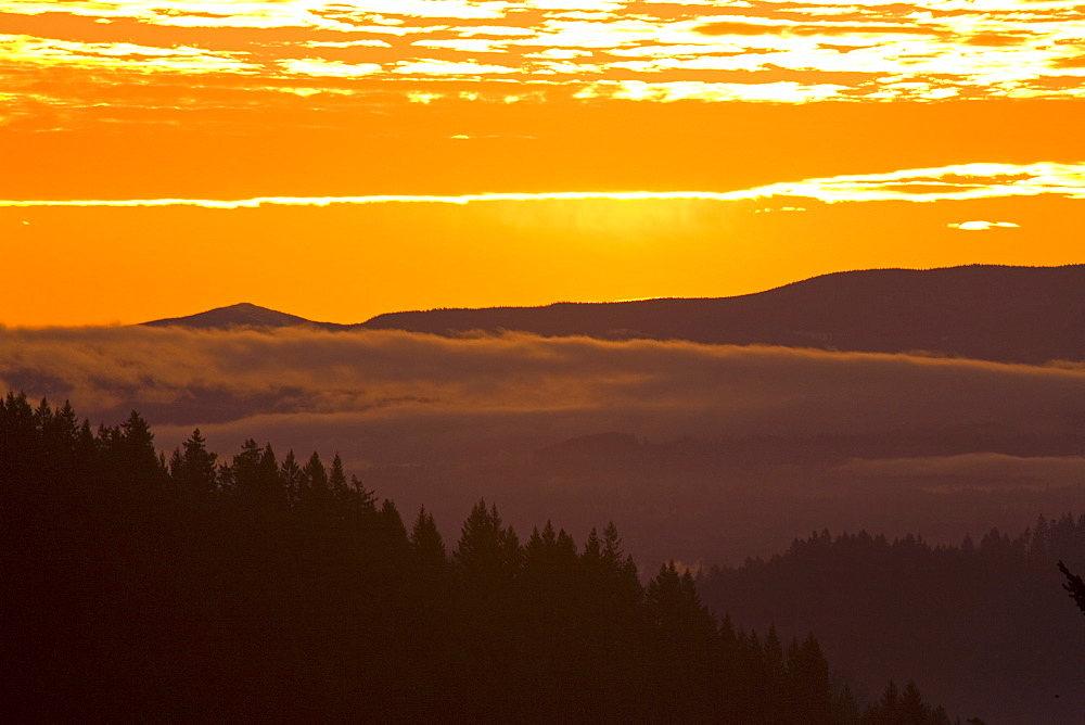 Sunrise, Willamette Valley, Oregon, United States Of America