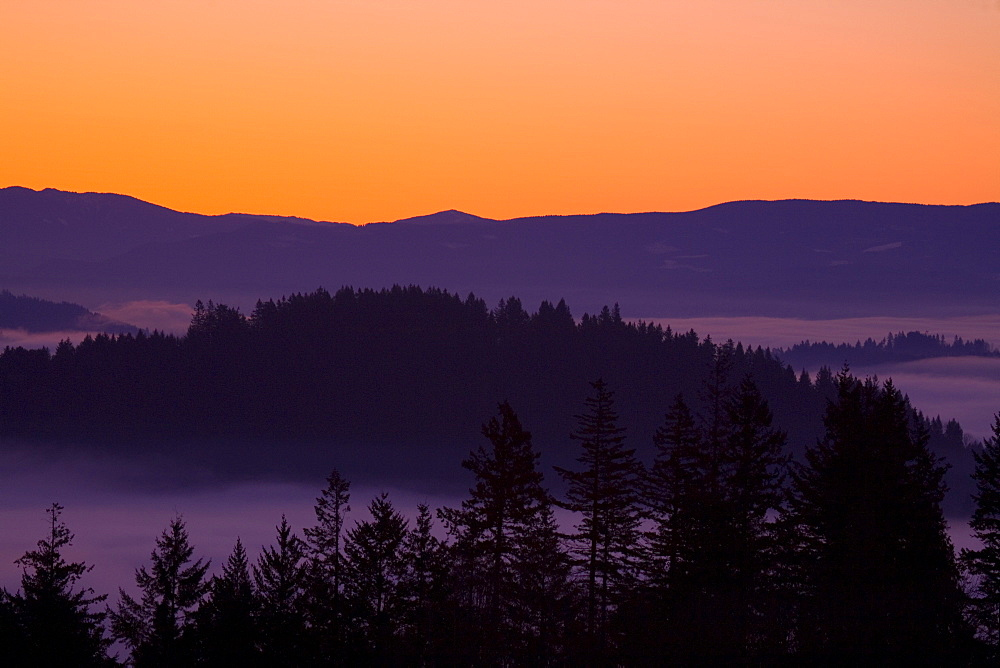 Sunrise As Seen From Mount Scott, Willamette Valley, Oregon, United States Of America