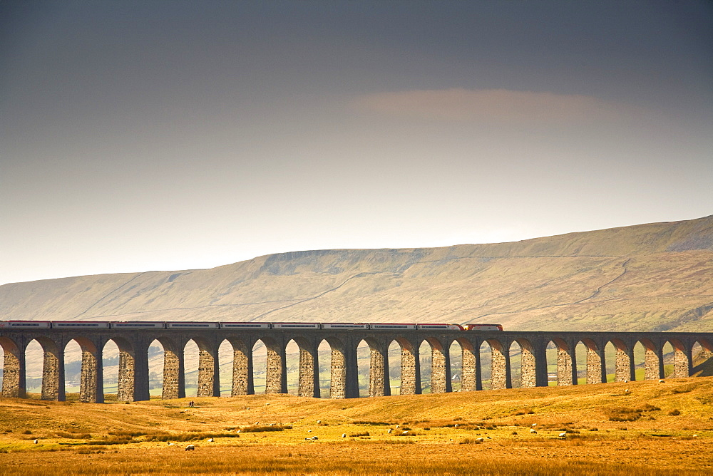 Train And Bridge, Yorkshire Dales, England