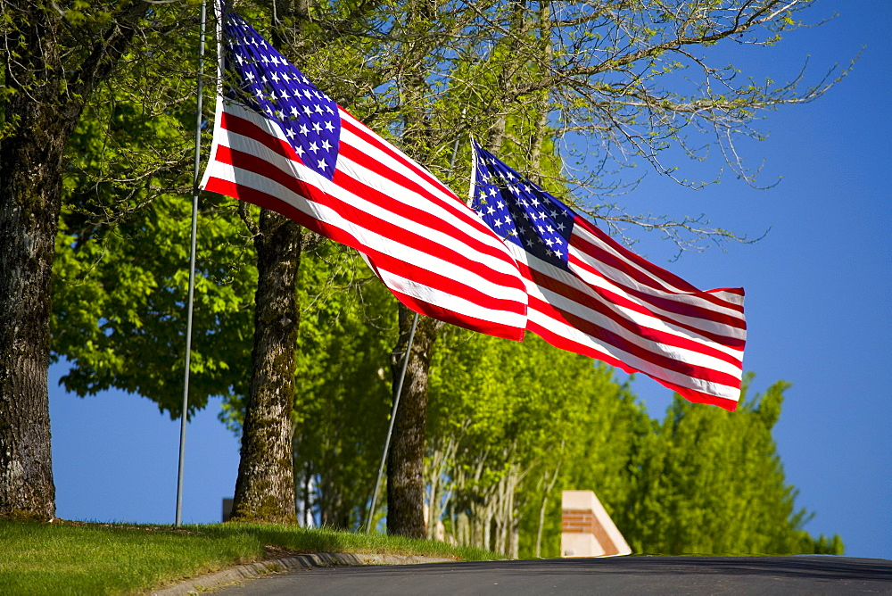 American Flags Along A Road In Oregon, Usa