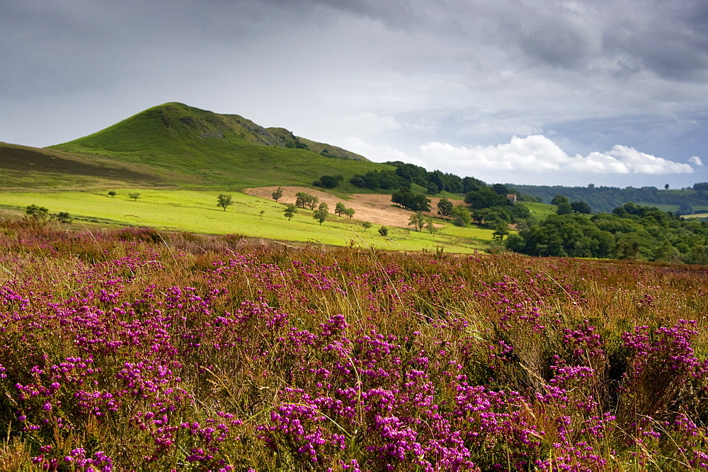 Rolling Hills, North Yorkshire, England