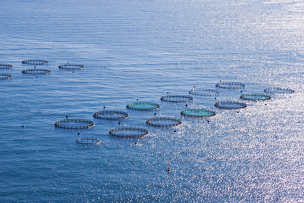 Aquaculture Fish Farm, Costa Tropical, Granada, Spain