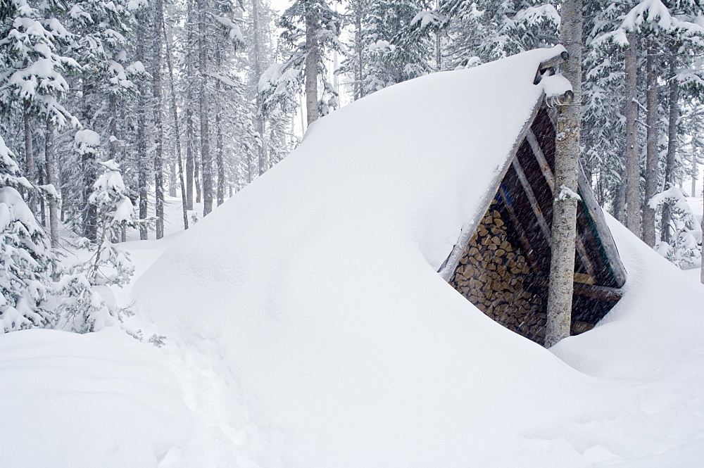 Snow-Covered Wood Shed, Wallawa Mountains, Oregon, Usa