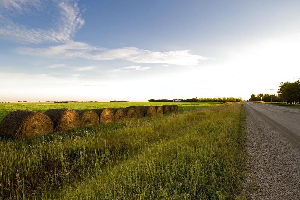 Hay Bales Along A Road, Manitoba, Canada