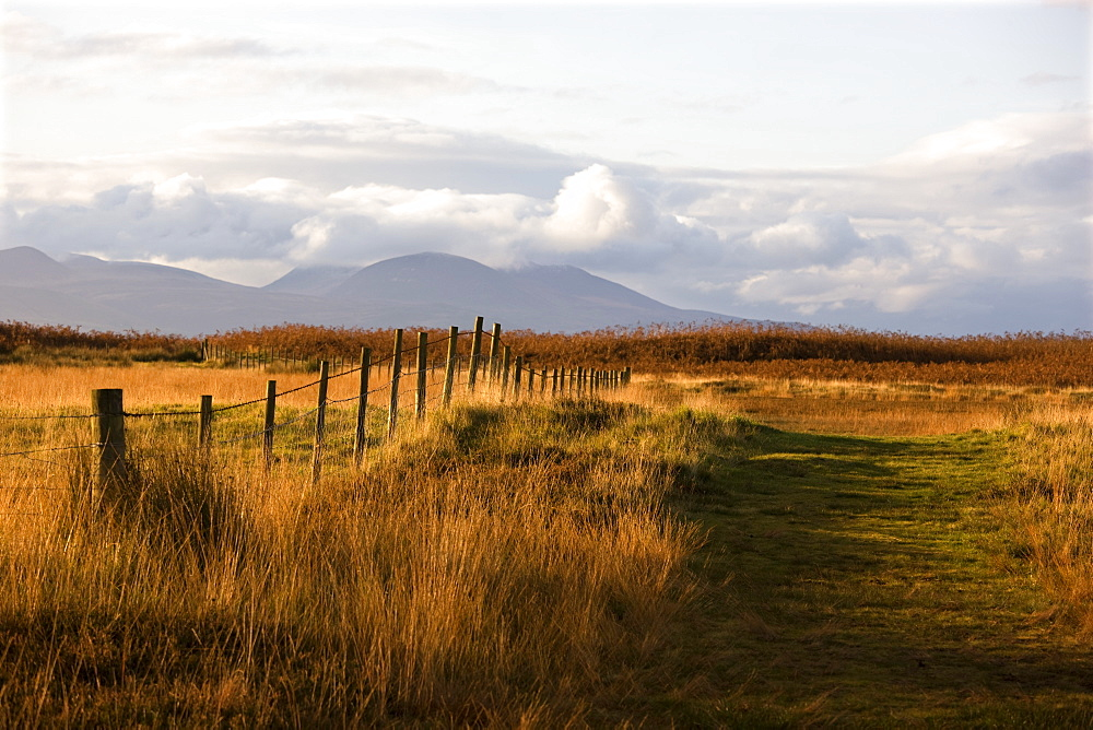 Countryside With Mountains In The Distance, Argyll And Bute, Scotland