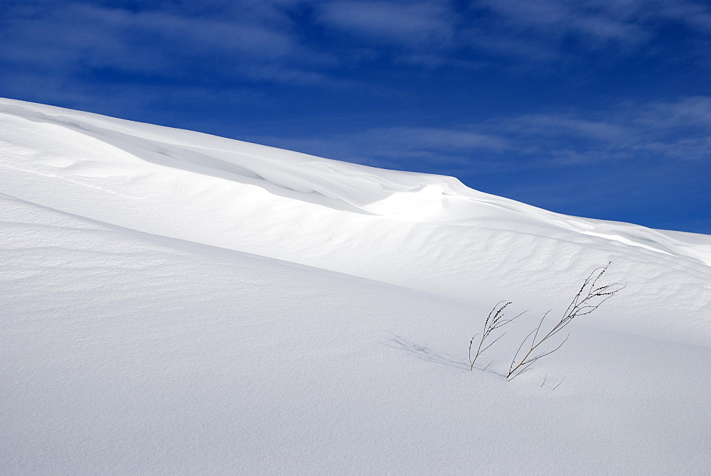 Snow Covered Slope With Blue Sky