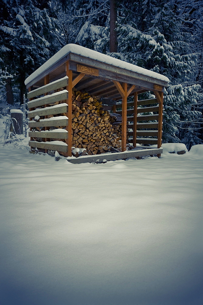 Wood Shack Filled With Chopped Wood