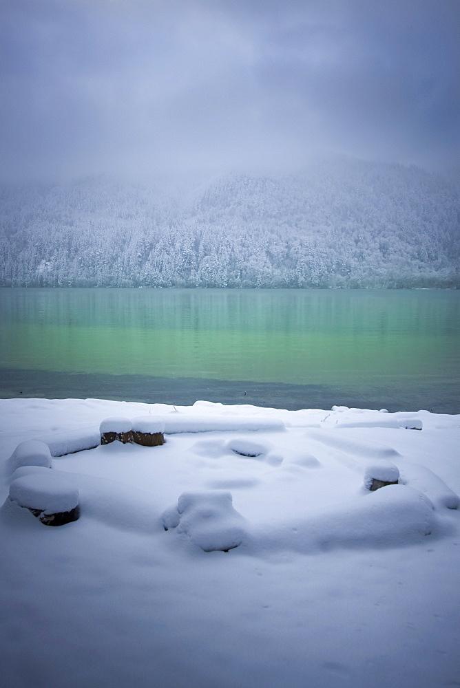 Fresh Snowfall