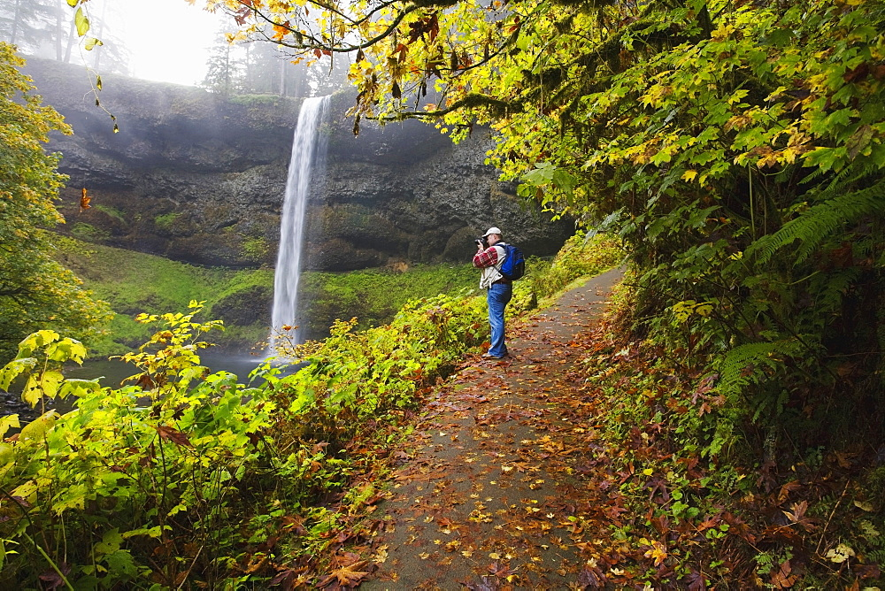 Silver Falls State Park, Oregon, United States Of America, Hiker Along South Falls In Autumn