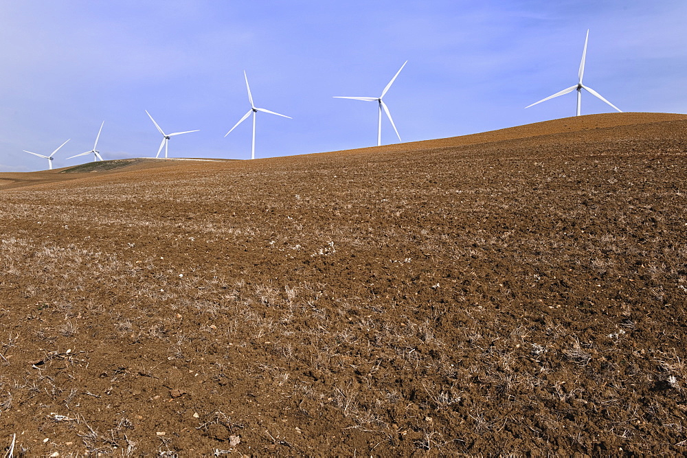Tarifa, Cadiz, Andalusia, Spain, Wind Turbines In An Empty Field
