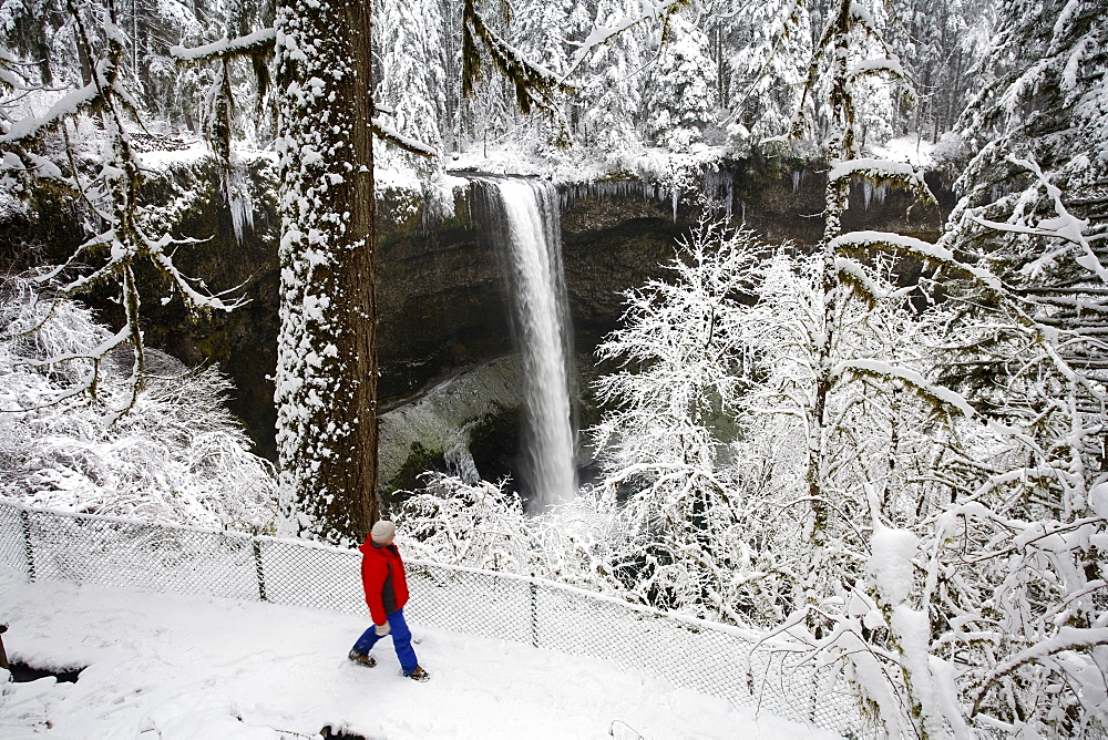 A Person Standing In The Snow And Watching A Waterfall In Winter