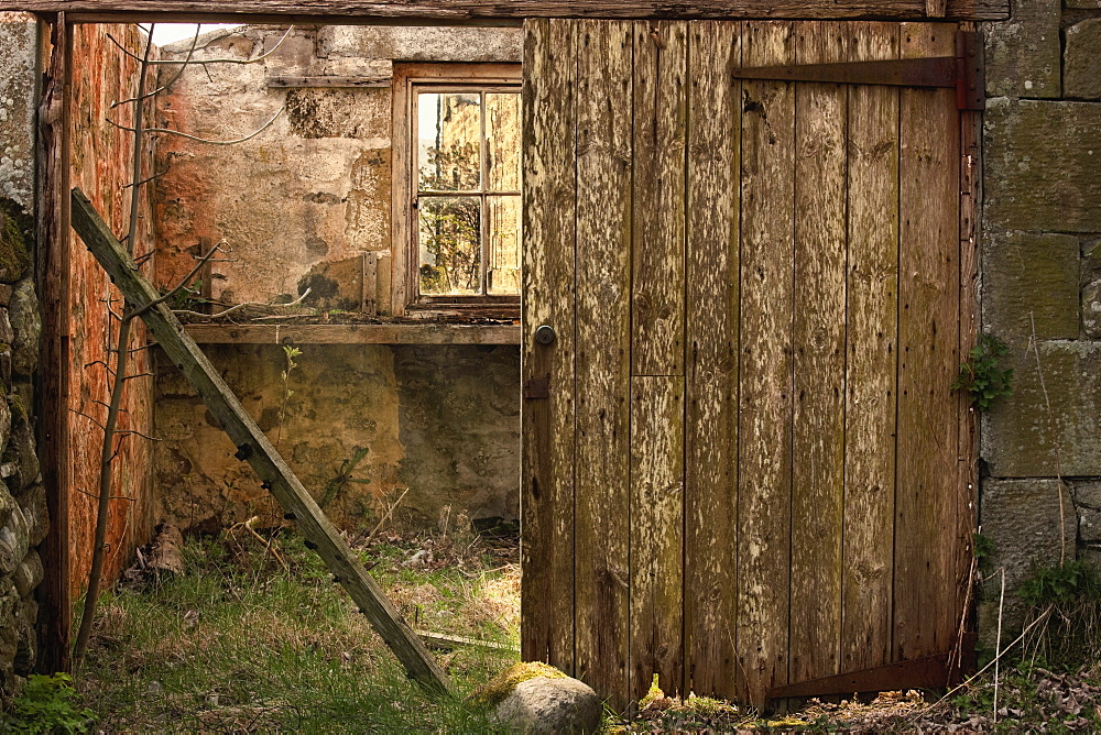 Northumberland, England, An Abandoned Building In Ruins With A Broken Wooden Door