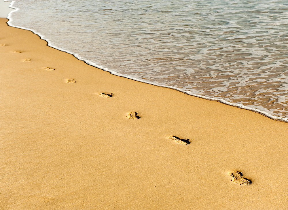 Footprints In The Sand Along The Water's Edge, Cadiz, Spain