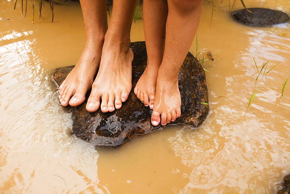 Bare Feet Standing On A Rock In Murky Water In Currumbin Creek, Currumbin, Gold Coast, Queensland, Australia