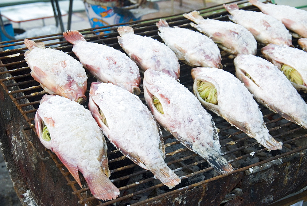 Grilled salted fish stuffed with lemongrass, Mae Hong Son Province, Thailand - 1116-41610