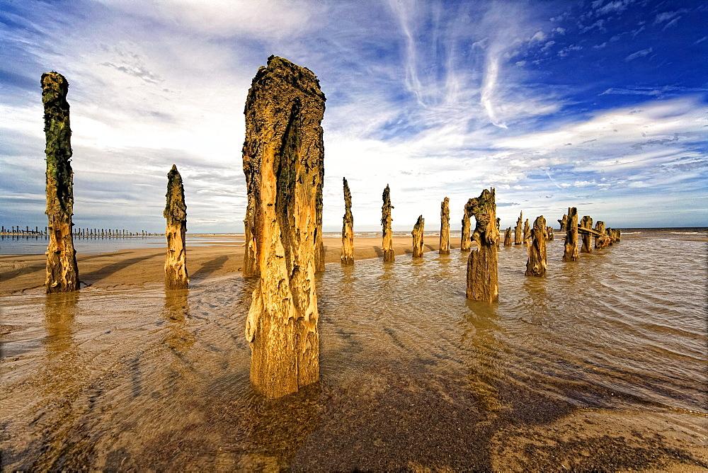 Remnants Of Moorings In Water, Humberside, England