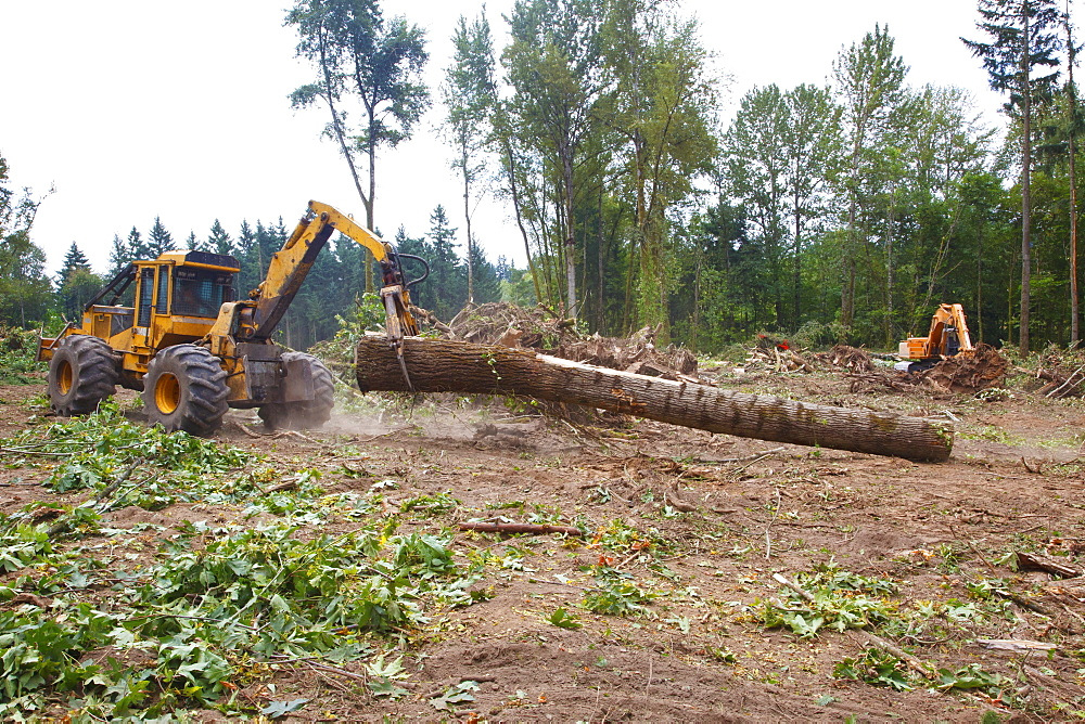 A Tractor With Grapple Moving A Log, Portland, Oregon, United States of America