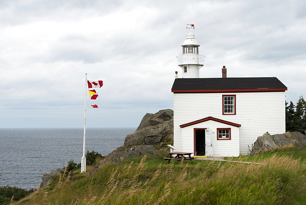 Lobster Cove Head Lighthouse At Gros Morne National Park, Newfoundland And Labrador, Canada