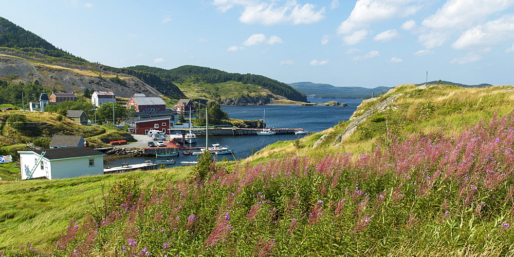 A Fishing Village Along The Coastline Of Newfoundland, Trinity, Newfoundland And Labrador, Canada