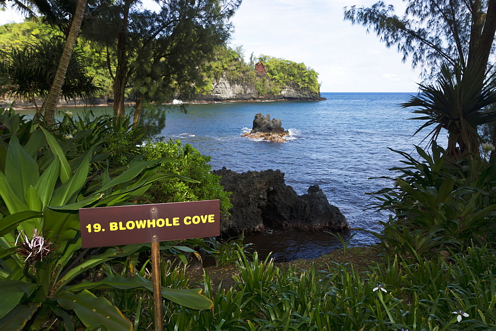 Blowhole Cove In Onomea Bay, Island Of Hawaii, Hawaii, United States Of America