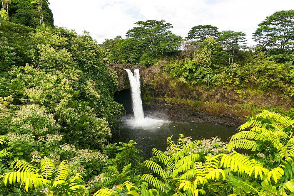 Rainbow Falls, Hilo, Island Of Hawaii, Hawaii, United States Of America