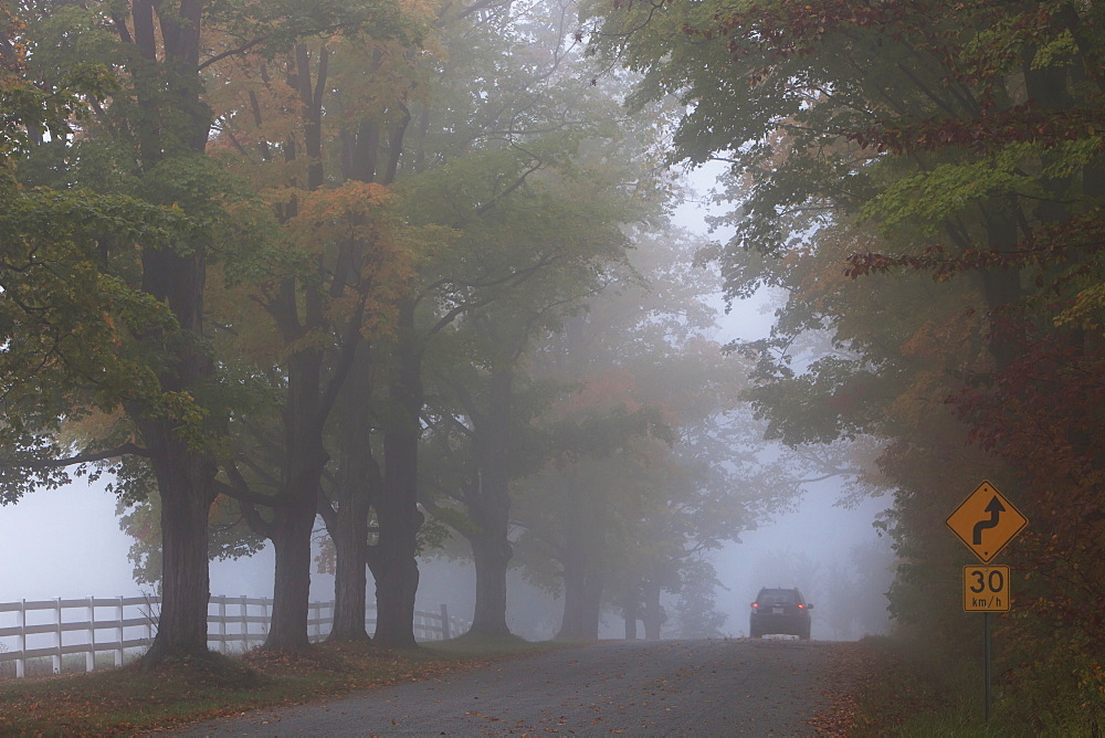 Country Road On A Foggy Afternoon Near Milton, Ontario, Canada