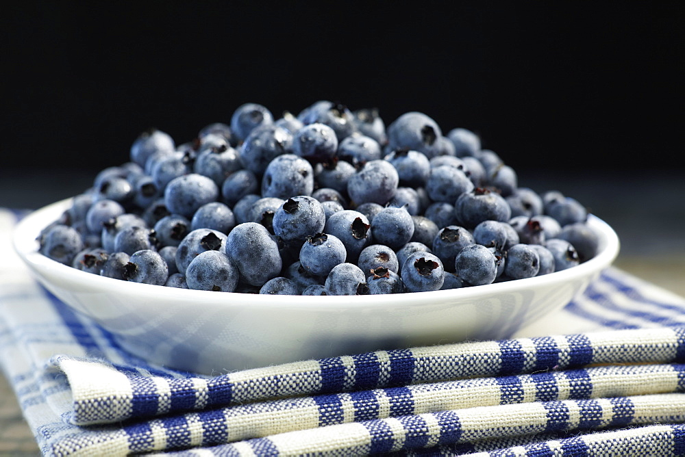 Bowl Of Blueberries, Quebec, Canada