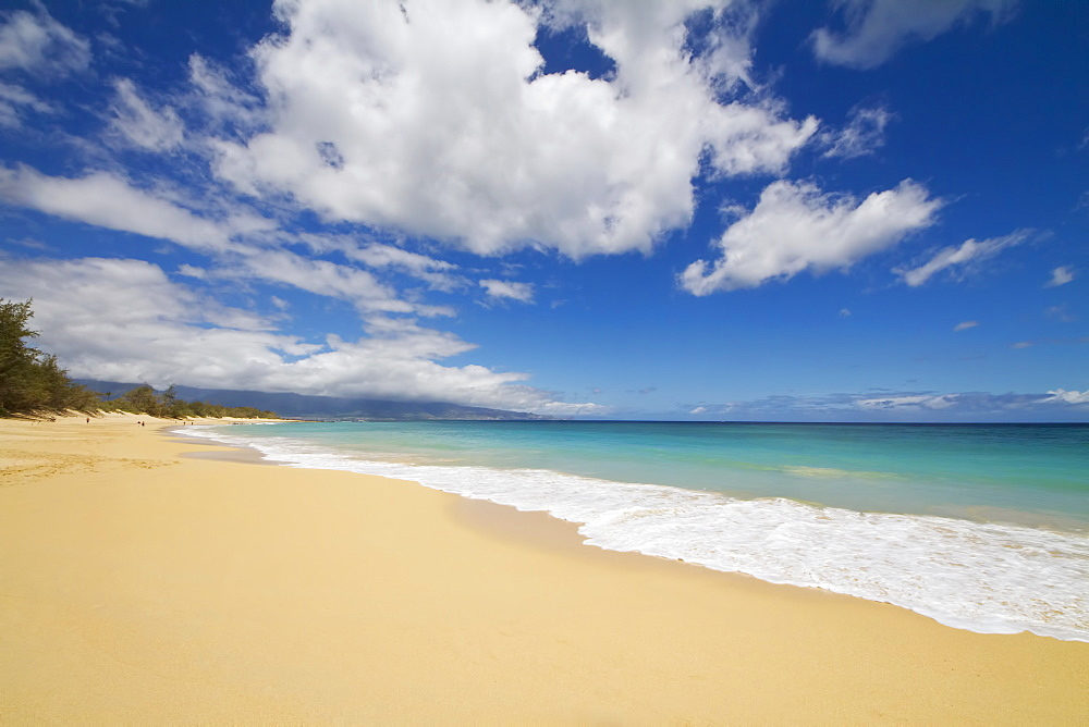 Baldwin Beach On The North Shore Of Maui, Paia, Maui, Hawaii, United States Of America