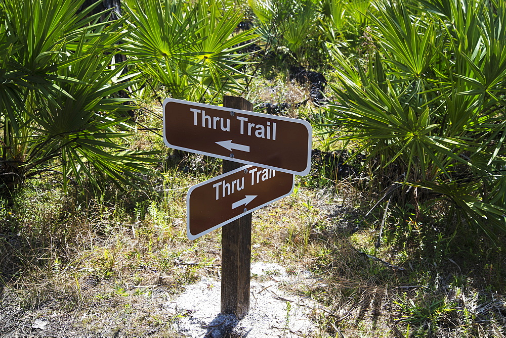 Trail Signs In Tosohatchee Wildlife Management Area, Florida, United States Of America