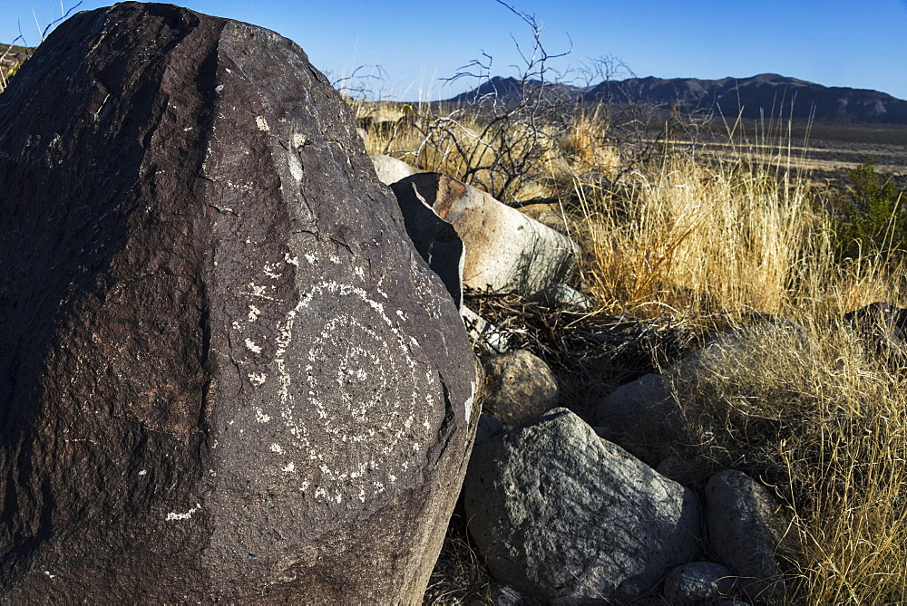 Three Rivers Petroglyph Site, New Mexico, United States Of America