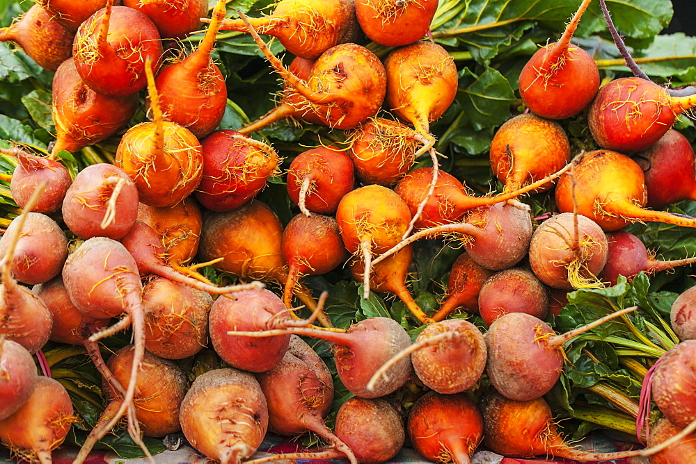 Golden Beets At A Farmer's Market, Toronto, Ontario, Canada