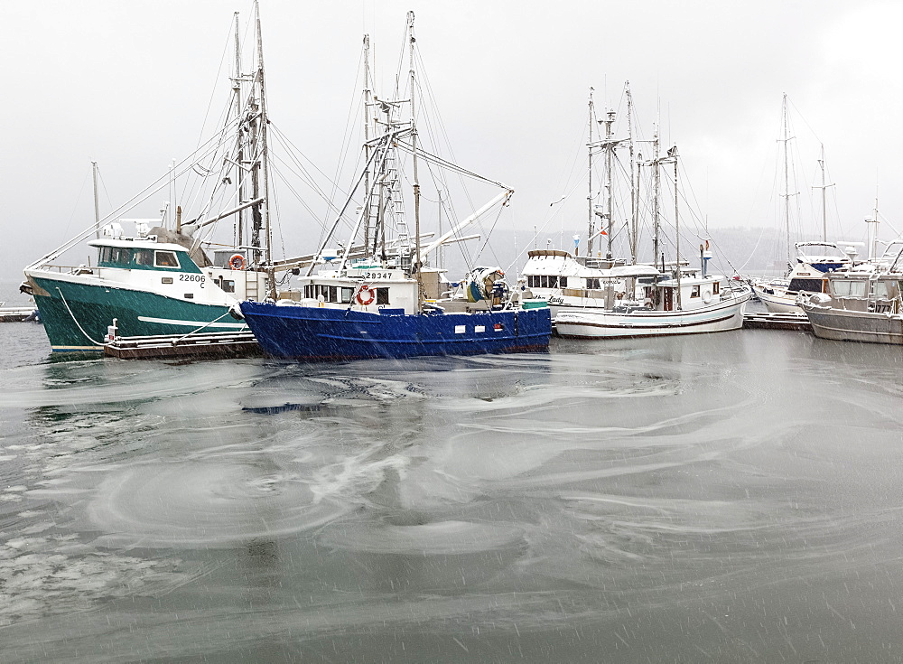 Boats Sit At Dock As Ice Covers The Waters In The Seaside Village Of Cowichan Bay On Vancouver Island, Duncan, British Columbia, Canada