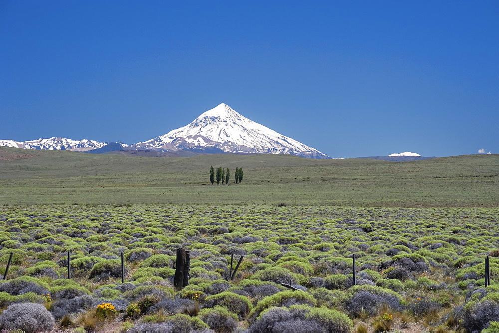 Lanin Volcano, Neuquen Province, Argentina