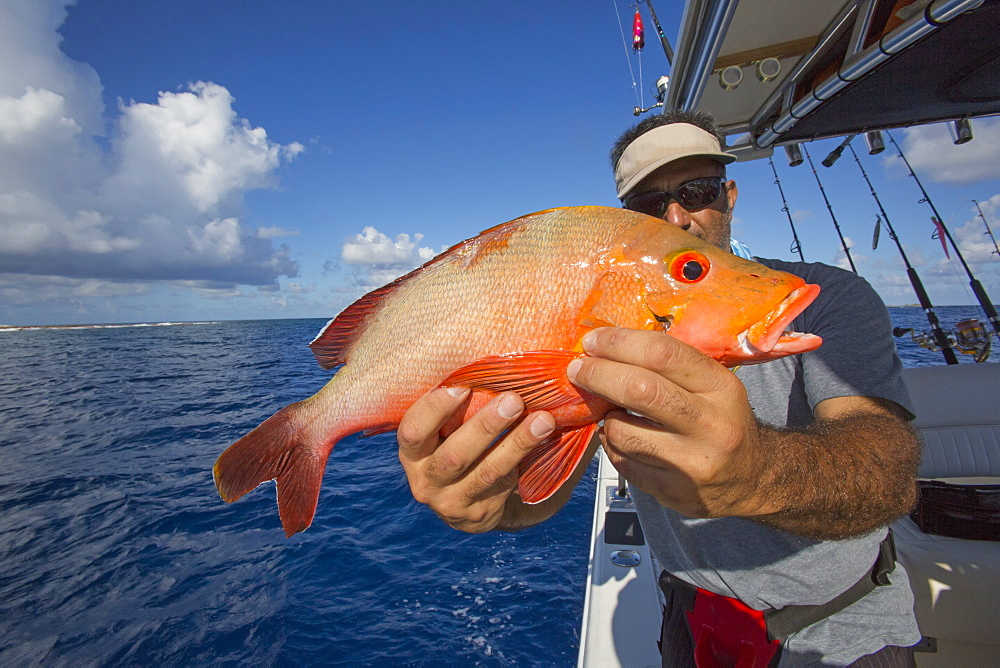 Fisherman Holding A Fresh Caught Red Fish, Tahiti