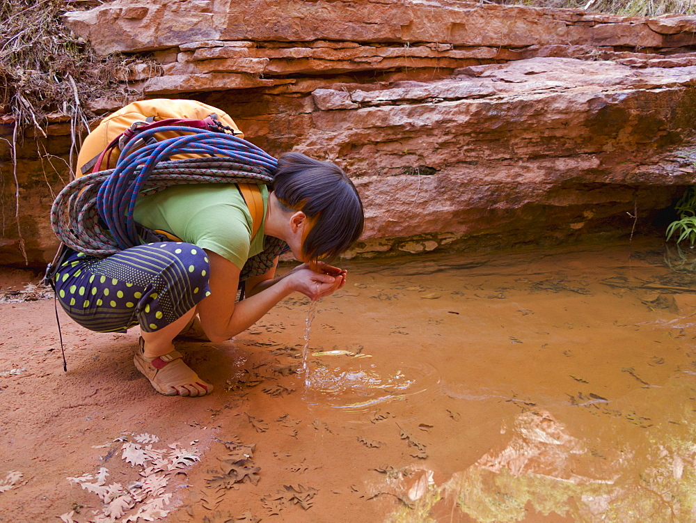 Female Adventurer Drinking From A Desert Oasis, Hanksville, Utah, United States Of America