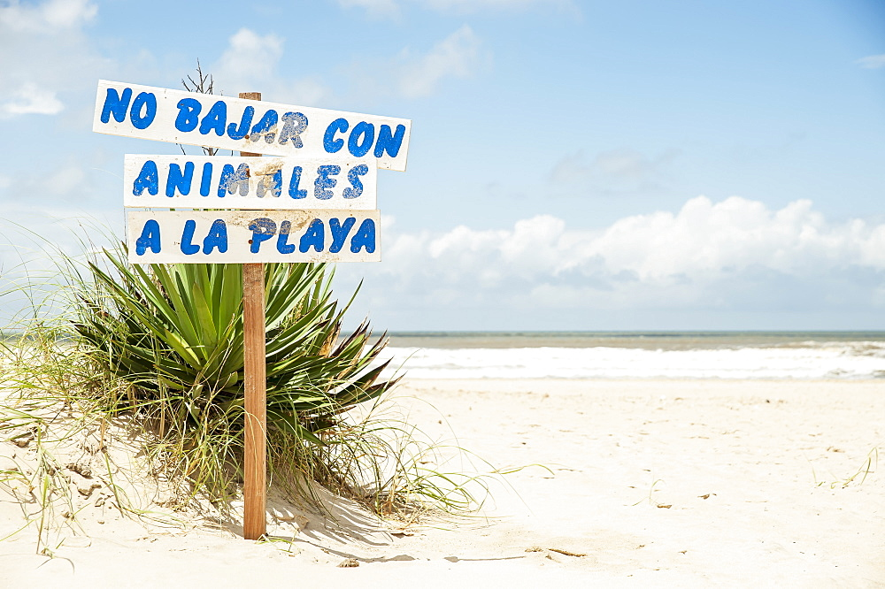 Sign Prohibiting Animals On The Beach, Valizas, Uruguay
