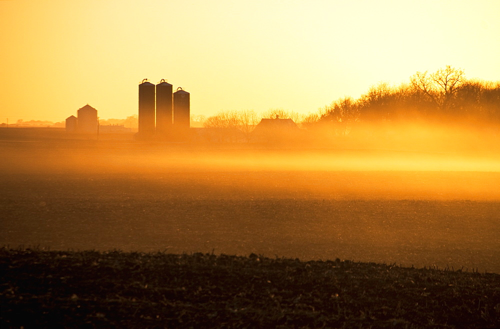Hazy Sunrise Light On Fallow Corn Fields And A Farmstead With Harvestore Silos, Near Truman, Minnesota, United States Of America