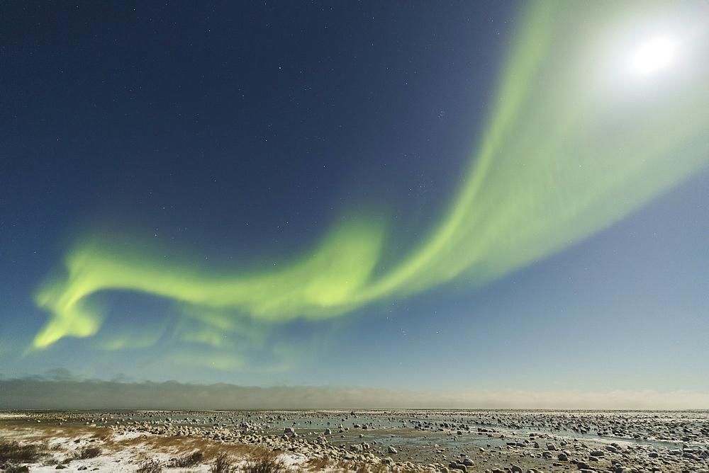Aurora Borealis Over Hudson Bay, Manitoba, Canada