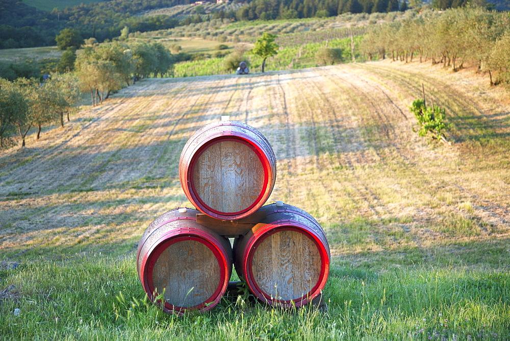Chianti Wine Barrels, Tuscany, Italy