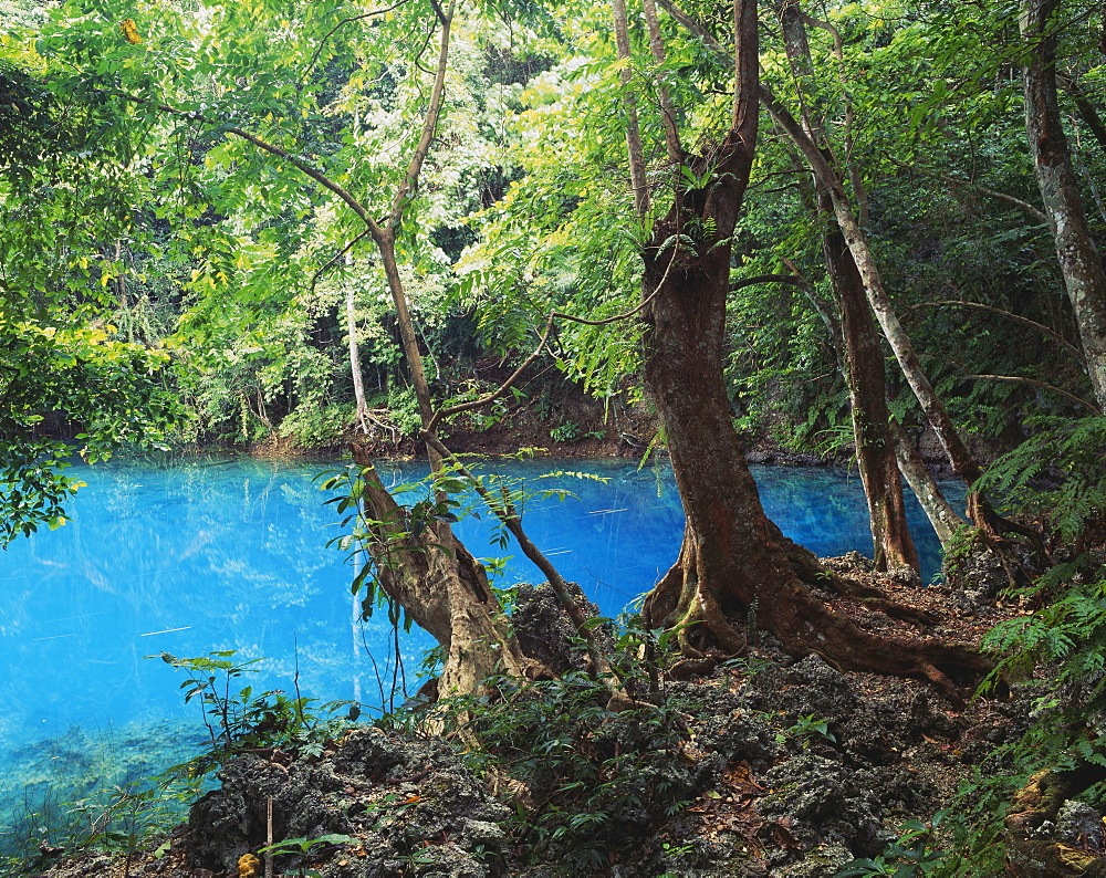 One Of Several Blue Holes On Efate Island, Efate Island, Vanuatu