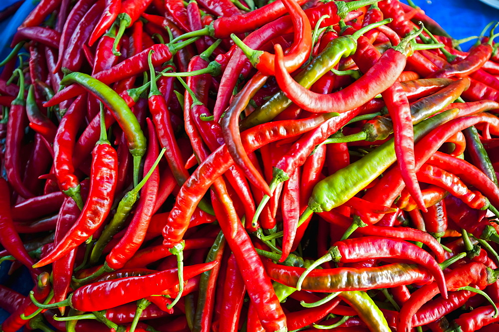Chillies In Local Market, Bandar Seri Begawan, Darassalam, Brunei