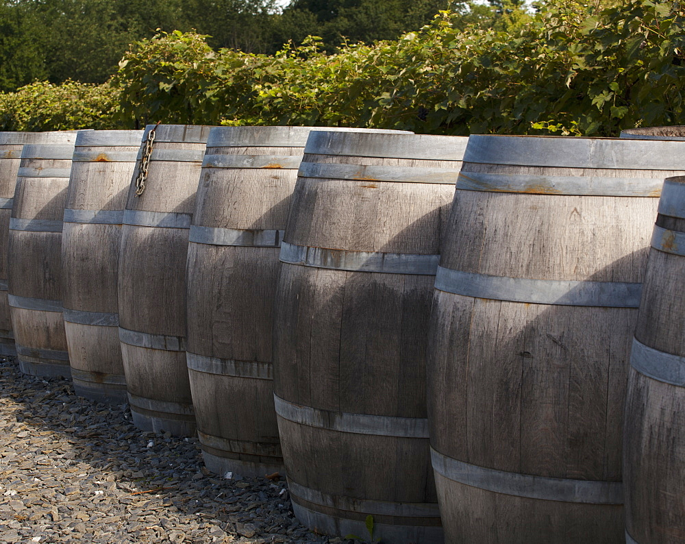 Wine Barrels, Dunham, Quebec, Canada