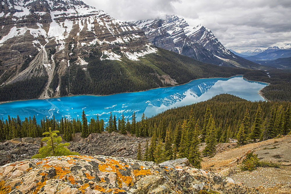 The Aquamarine Waters Of Peyto Lake, Banff National Park, Alberta, Canada