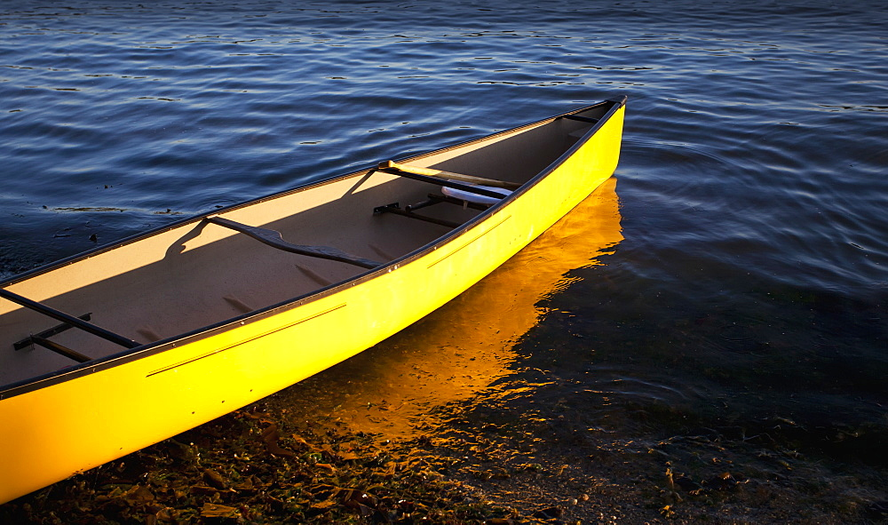 Yellow Canoe In The Shallow Water At The Water's Edge, Vancouver, British Columbia, Canada