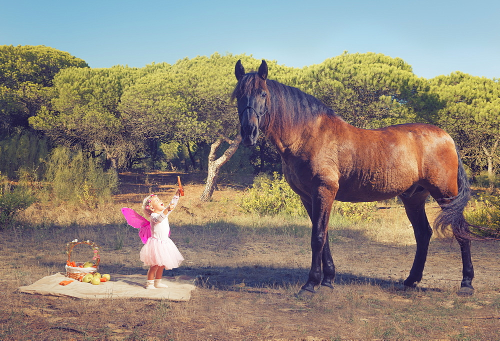 Young Girl With Pink Ferry Wings And A Brown Horse, Tarifa, Cadiz, Andalusia, Spain - 1116-43887