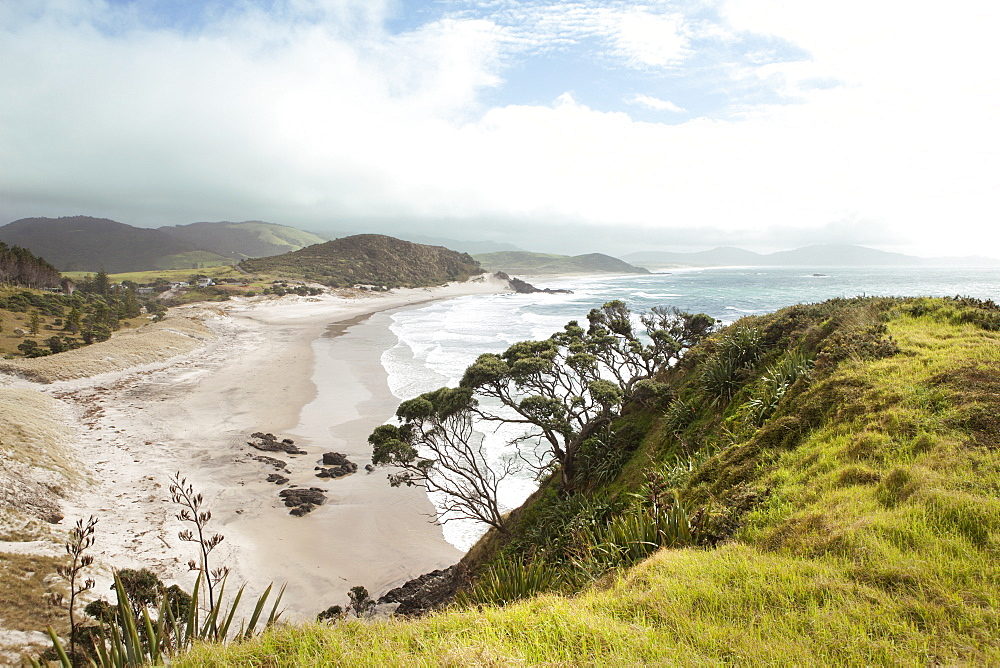 View Of The Seaside, South Pacific, North Island, New Zealand