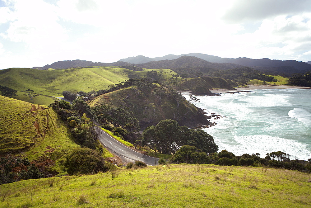 Road On A Mountainous Seaside, North Island, New Zealand
