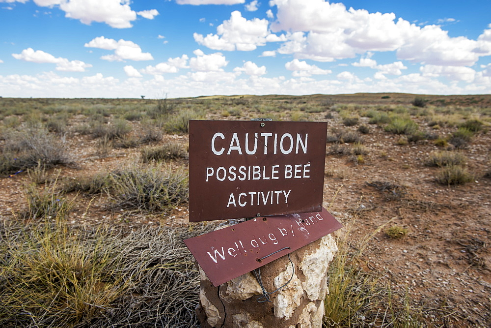 Bee Activity Caution Sign, Khalagadi Transfrontier Park, Aucherlonie Museum, South Africa