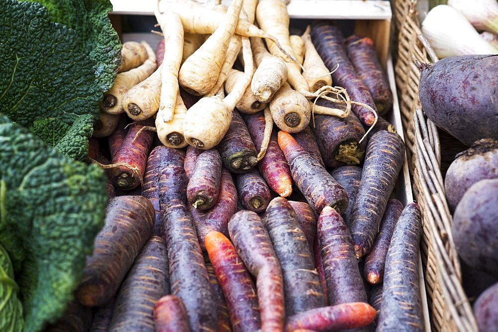 Turnips At A Farmers Market, Frankfurt, Germany - 1116-44136